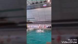 Прыжки в воду. Тальяти. Ласточки Жигулей.