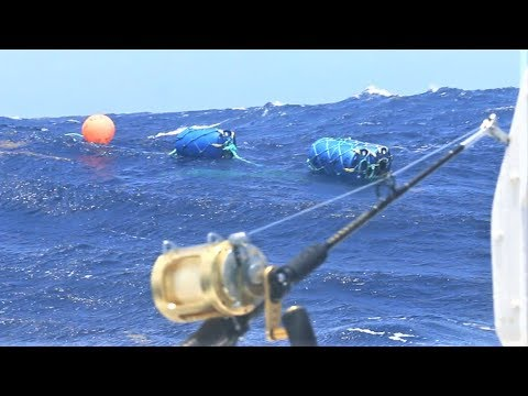 FOUND A LOST Fish Aggregating Device Deep Sea Fishing In Antigua! TONS Of Fish On It!