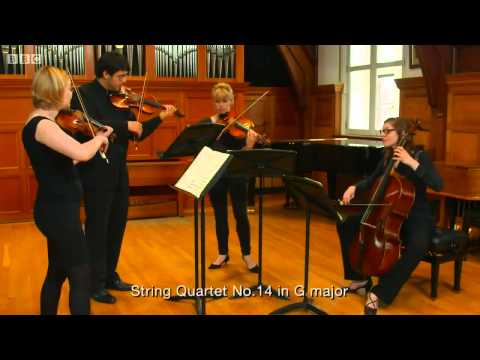 The Joy of Mozart BBC Documentary 2015