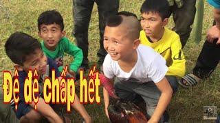 ĐCM - Gặp Mao Đệ Đệ đi đá gà và bị trẻ con bám theo