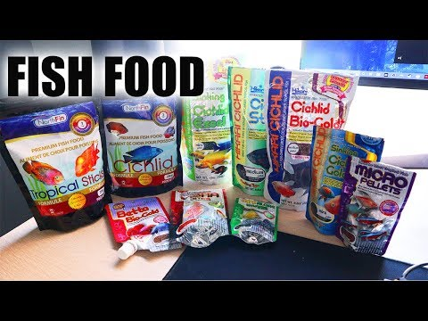 BEST AQUARIUM FISH FOOD 2019