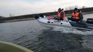 Я на лодке Шарк 255 снимаю друзей на лодке касатка с мотором Hidea 18