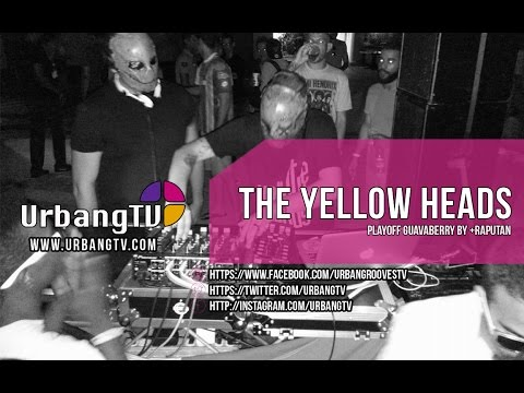 The Yellow Heads @ Playoff Guavaberry RD by +Rapután