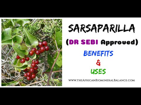 SARSAPARILLA BENEFITS & USES (DR SEBI APPROVED)