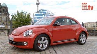 VW Beetle - Ausfahrt im Käfer-Urenkel