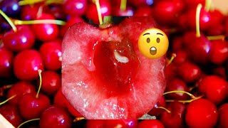 BEWARE!! WORMS FOUND IN CHERRIES 🍒