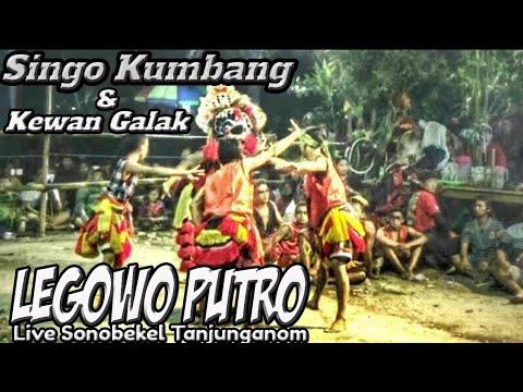 Perang Patih Singo Kumbang VS Bujang Ganong Legowo Putro Live Sonobekel !!!  Mantab ing Solah !!!