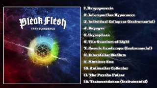 Bleak Flesh - Transcendence (FULL ALBUM/HD)