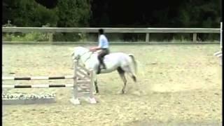 Horse Jumps - Watch David O
