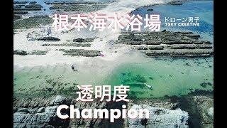 南房総 ドローン空撮【根本海水浴場】透明度チャンピオン!  館山 絶景 4K Drone Japan