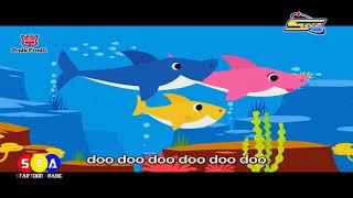 بابو الحوت دودودو Mp3