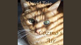 Cozmo's Air