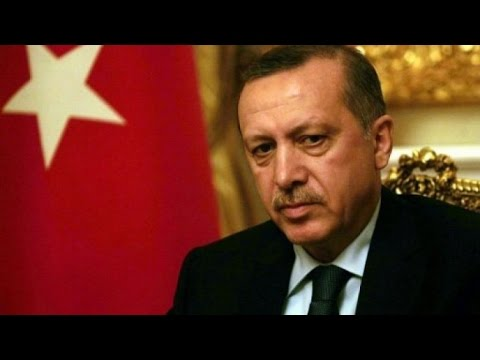 """Failed coup in Turkey - """"Erdogan's response is opportunistic"""""""