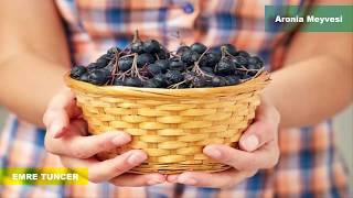 Aronia Meyvesi Nasıldır ? Bilinmeyen Faydası