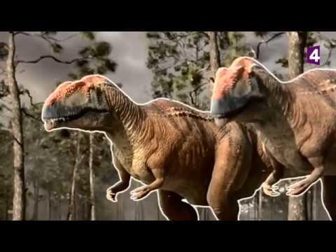 Mapusaures VS argentinosaurus (dinosaures) - ZAPPING SAUVAGE