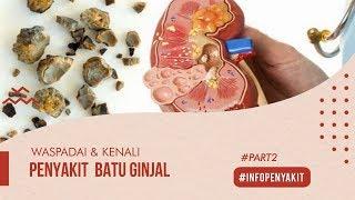 Jakarta, tvOnenews.com -Infused Water Lancarkan Pencernaan Hingga Ampuh Cegah Penyakit Batu Ginjal -.