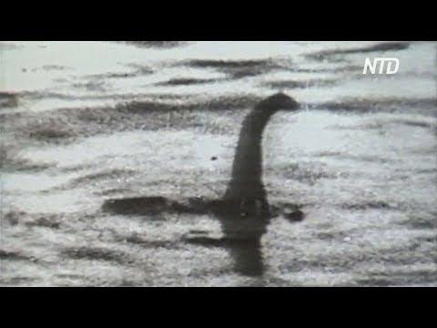 Появилось новое видео-доказательство существования Лох-несского чудовища
