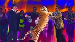 4к видео Боярский дергает тигра за хвост! Что произошло дальше ...