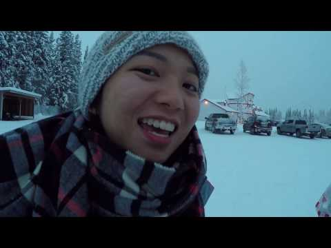 Alaska trip in Fairbanks