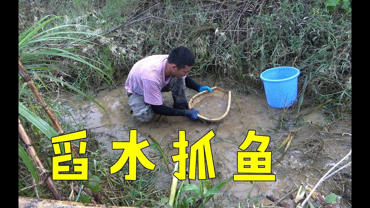 深山脚下断流沟渠发现有动静,阿琪直接舀水抓鱼,这样抓鱼最过瘾【农村阿琪】