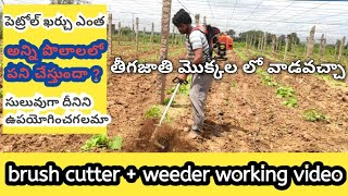 brush cutter + weeder working video ! vegetable plants ! how to work brush cutter