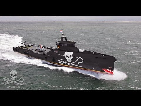 It's Official. Sea Shepherd Signs Contract for New Vessel.