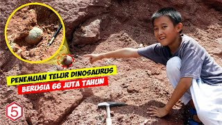 Lagi Asyik Main Bocah ini malah temukan Telur berusia 66 juta tahun , Ternyata itu adalah telur....