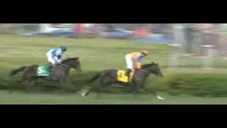 American Turf Stakes 2013_Noble Tune_Javier Castellano