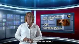 Godt - A Career With  Vicky Lawes  Dog Instructor Godt Tv
