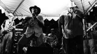 The Soulard Blues Band w/ Big George Brock Jr. at the Big Muddy Blues Festival - Chicken Heads