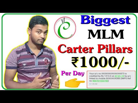 Catter Pillars Biggest MLM Plan || Earn ₹1000/- Per Day With Payment Proof || Instant