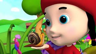 Lilla Snigel Akta Dig - Barnmusik TV.se