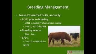 300 days of grazing program cattle management