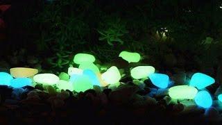 Luminous Pebbles Glow Stones - Light your garden & Aquarium