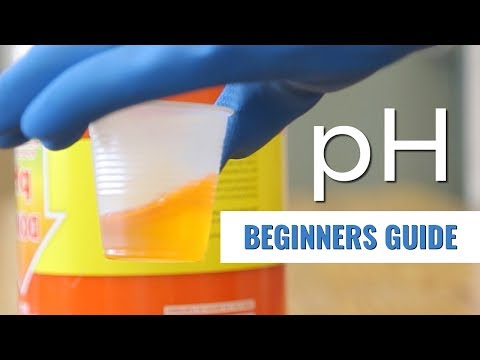 A Beginners Guide: pH in Hydroponics
