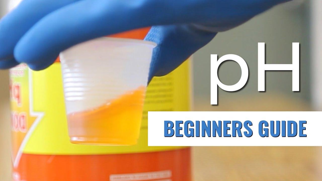 A Beginners Guide: pH in Hydroponics