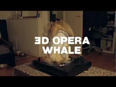 Buttonhead - '3D Opera Whale' - Album Release Trailer