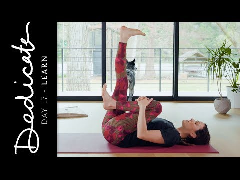 Dedicate - Day 17 - Learn  |  Yoga With Adriene