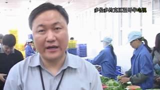 Guangdong dong sheng farm, 广东东升农场, 2008