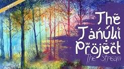 The Tanuki Project - The Stream (I, Pet Goat II SoundTrack)