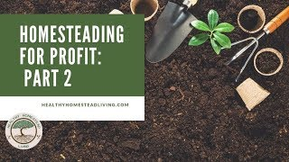 Homesteading for Profit, Part 2:  Business Strategies