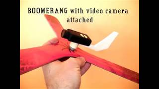 Boomerang with video camera attached
