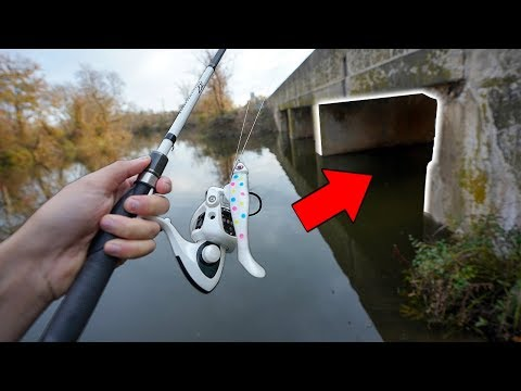 Searching HIDDEN Tunnels For GIANT Fish!! (Flood Mission)