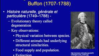 Evolutionary Thought (Part 1)
