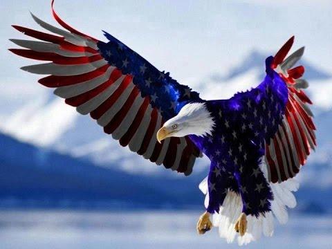 US Flag vinyl