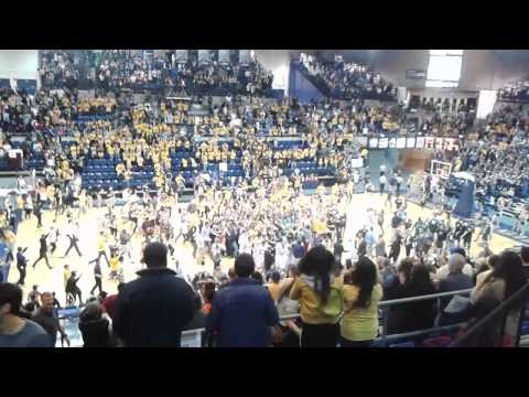 UC Davis Victory vs Cal Poly - Students Rush Court