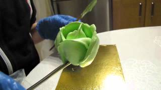 MVI 0109 Кремовые розы.(Розы с белково-заварного крема большой насадкой., 2014-12-12T22:20:53.000Z)