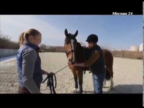 бесплатное обучение верховой езде в москве