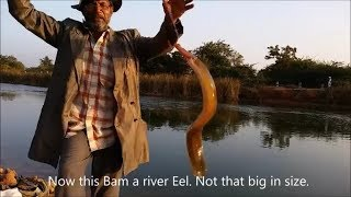 Bam & Tilapia fishing with earthworms + subtitles and transaction watch and learn