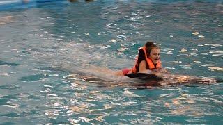 Плавание с дельфинами! Минский дельфинарий Немо(Моя мечта поплавать с дельфинами сбылась! В Минском Дельфинарии я плавала с дельфином по имени Хьюго! Невоз..., 2016-02-27T12:06:24.000Z)